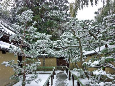 201601_snow